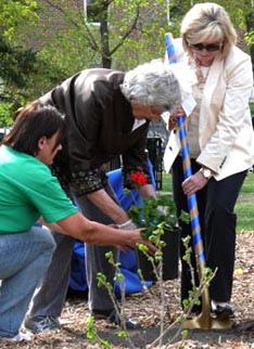 Women plant geraniums, Msgr. Irwin's favorite flower in the park that bears his name.