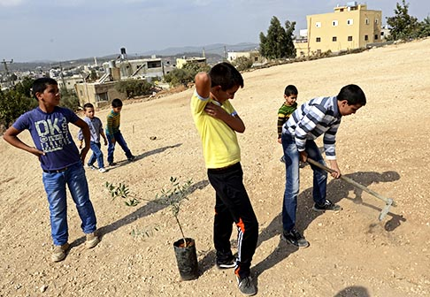 Palestinian boys dig a hole for an olive tree sapling in a recently de-mined area in Husan, near Bethlehem, in the West Bank, Nov. 1. The area was cleared of land mines from the 1967 Arab-Israeli War by Roots of Peace: Mines to Vines, a project founded by Catholic Heidi Kuhn to clear land mines and plant the grounds with indigenous, sustainable plants and trees.