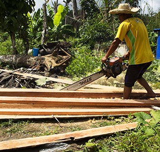 A man saws a coconut tree into construction beams in Tanauan, Philippines. Catholic Relief Services hired experienced chainsaw operators to cut coconut trees that were felled or sheared off by Typhoon Haiyan's powerful winds.