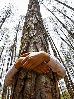 A man hugs a tree while celebrating World Environment Day near Kathmandu, Nepal.
